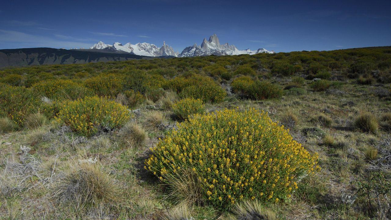 patagonie-07